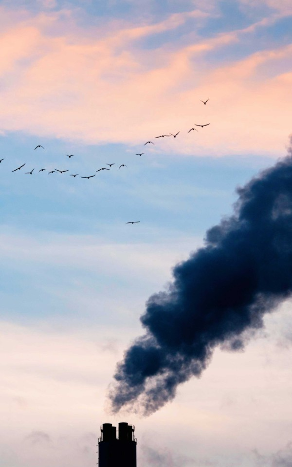 脱炭素社会